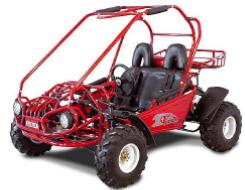 Carter Brothers Talon GSX 150 Go Kart / Dune Buggy