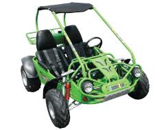 Hammerhead 150 GT Go Kart / Dune Buggy