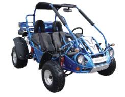 Hammerhead 250 SS Go Kart / Dune Buggy
